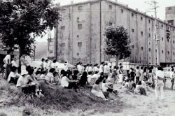 旧税関跡地で開催のメインステージの観衆(写真提供:志佐公道氏)