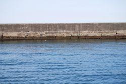 百年以上健全な廣井 勇設計の斜め積みブロック